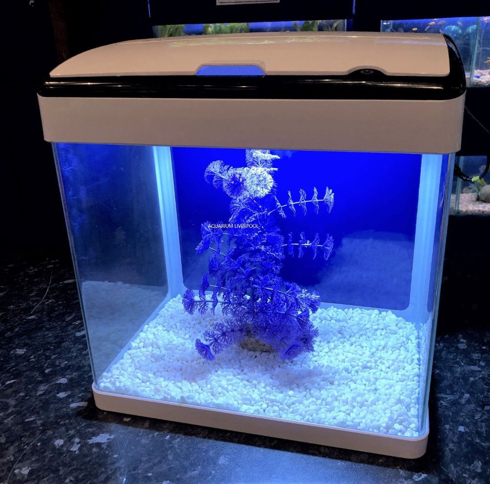 H5 WHITE Glass Aquarium with Touch LED Lights & Trickle Filter